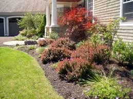 Small Picture gardening under pine trees marvelous perennial garden plans zone
