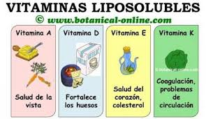 Resultado de imagen para imagenes de vitaminas animadas