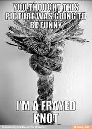 frayed, knot, meme - Pun pun pun pun pun pun pun pun pun pun pun... via Relatably.com