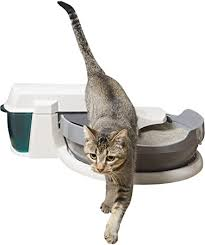 PetSafe Simply Clean Self-Cleaning Cat Litter Box ... - Amazon.com