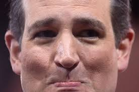 Image result for ted cruz