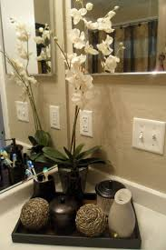 bathroom decor ideas unique decorating:  ideas about small bathroom decorating on pinterest small bathrooms curling iron storage and primitive bathrooms