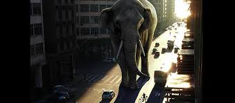 awesome lighting effect for a giant elephant awesome lighting