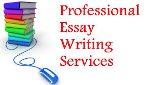 essay writing   how to write business essay
