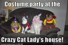 11 Best Pics of the Crazy Cat Lady Meme via Relatably.com