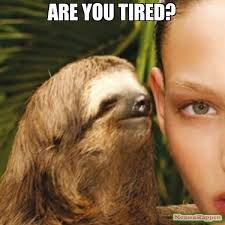 Are you tired? meme - Whisper Sloth (11038) | Memes Happen via Relatably.com