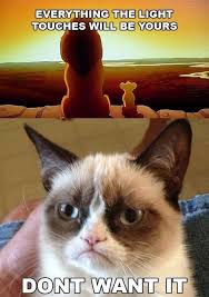 Except Maybe That Shadowy Place | Pets | Pinterest | Grumpy Cat ... via Relatably.com