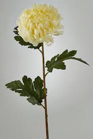 <b>Хризантема 75 см EDG</b> 213279.12 - цена 1190 руб., купить на ...