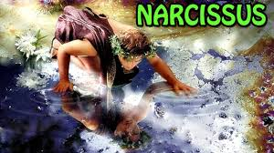 narcissus incidental story for kids children charlie narcissus incidental story for kids children charlie