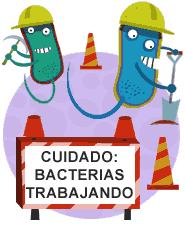 Resultado de imagen de imagenes de alimentos prebióticos