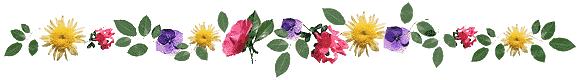 Resultado de imagen para barra separadora para blog gratis flores
