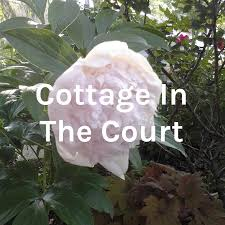 Cottage In The Court