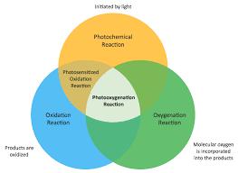 venn diagrams solution   conceptdraw comvenn diagrams
