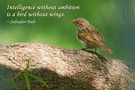 Intelligence Quotes - Intelligence without ambition is a bird ...