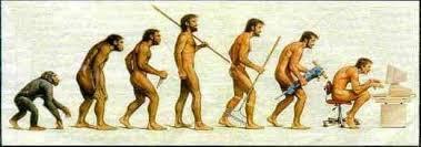 Výsledek obrázku pro vývojová linie člověka