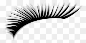 <b>Lashes</b> Clip Art, Transparent PNG Clipart Images Free Download ...
