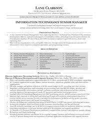 sample resume construction project manager functional resume template samples examples format resume professional resume template · another interview winning project manager cv