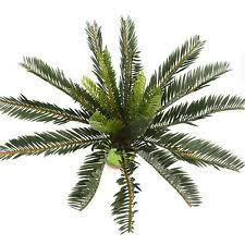 <b>Пальма</b> дерево пластик цветочный декор - огромный выбор по ...