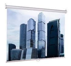 Купить <b>Экран LUMIEN Eco Picture</b> LEP-100102 в интернет ...