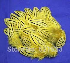 Online Shop <b>100Pcs</b>/<b>lot</b>!4-8cm fabulous yellow <b>Silver pheasant</b> ...