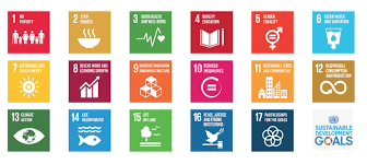 how the sustainable development goals can help your company sustainability development goals un