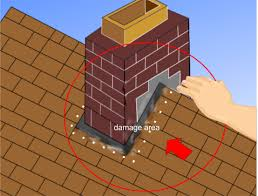 roof repair place:  repair a leaking roof step