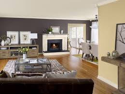 interior paint colors living room traditional