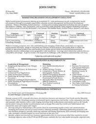 images about best sales resume templates  amp  samples on    click here to download this business development executive resume template  http