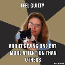 Crazy Cat Lady Meme Generator - DIY LOL via Relatably.com