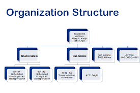 organizational structure analysis for southwest airlines co    i    organizational structure analysis for southwest airlines co