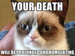 Your Death Will be Prolonged and Humiliating - Angry Cat Meme ... via Relatably.com