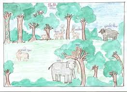 the importance of forest and its conservation  hindi version i want to give a brief of this hindi article on the topic importance of forest and its conservation  everyone is well known that to what extent forest is