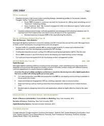 digital marketing manager resume sample 2 sample online marketing manager resume