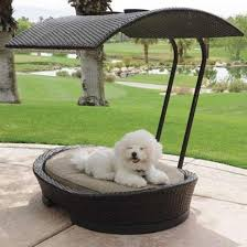 furniture design for bed. 20 modern pet beds design ideas for small dogs furniture bed