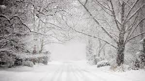 Image result for blizzard photos