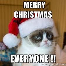 grumpy cat christmas pics | Merry Christmas Everyone !! | Grumpy ... via Relatably.com