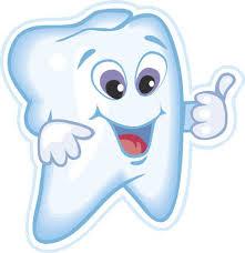 Znalezione obrazy dla zapytania stomatologist teeth