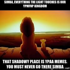 Simba, everything the light touches is our YPMFNP KINGDOM THAT ... via Relatably.com