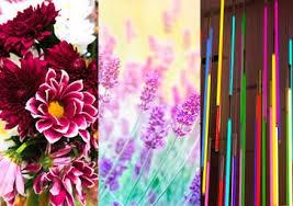<b>Color</b> Trend Highlights Spring/<b>Summer</b> 2021   Pantone