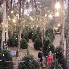 <b>Santa's Christmas Tree</b> Village - Port Saint Lucie, Florida   Facebook