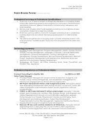 how to write a executive summary resume writing resume sample       executive summary