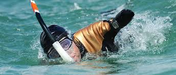 """Résultat de recherche d'images pour """"nage avec palmes humour"""""""