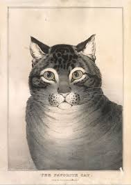 Lithographed and published by Nathaniel Currier | <b>The Favorite Cat</b> ...