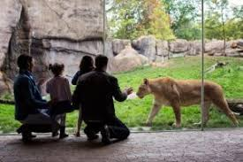 Photos of My trip to Chhatbir Zoo   adjacent to Chandigarh   Haryana    India   Reading AZ