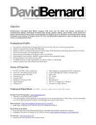 simple professional profile resume examples resume innovations resume professional profile example resume modern resume sample of
