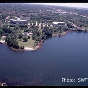 Massage Therapy Services in Egypt Lake-Leto, FL