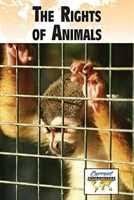 persuasive essay on animal abuse         persuasive essay on animal abuse   duration