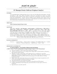 digital project manager exemple de cv sample resume project leasing agent resume leasing consultant resume financial sample independent beauty consultant resume examples it functional consultant