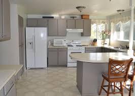 Kitchen Cabinet Painting Shining Diy Kitchen Cabinet Painting Tags Repainting Kitchen