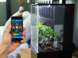 small hydroponics system brings clean air and greenery to your home or office app the company aqua design innovations app design innovative office